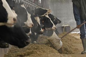Normat më të ulëta të interesit për fermerë