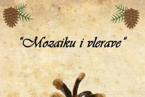 Vepra e artistit kosovar regjistrohet në Librin e Ginisit