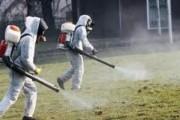 Javën e ardhshme fillon dezinsektimi kundër rriqrave në Malishevë