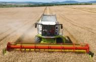 Rahoveci formon shtabin komunal për korrje-shirje
