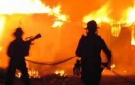 Vetëm gjatë korrikut 65 raste zjarresh në Malishevë