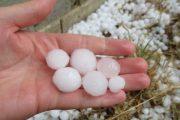 Reshjet e shiut dëmtuan kulturat bujqësore në Rahovec