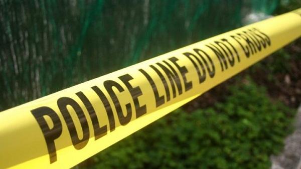 """""""Policia amerikane vitin e kaluar ka vrarë 987 persona"""""""