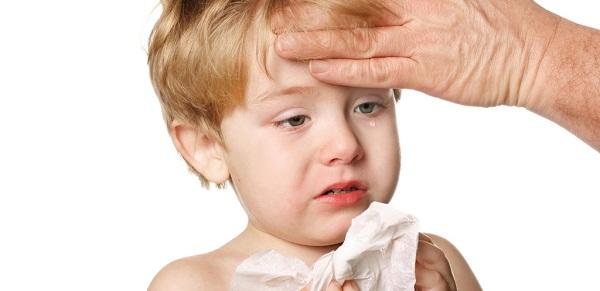 Gripi sezonal ka prekur më së shumti Prizrenin dhe Prishtinën
