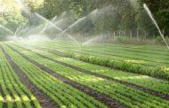 Nga viti 2018 qytetarët do të paguajnë edhe tatim për toka bujqësore