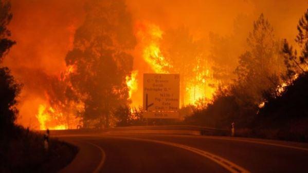 Zjarri malor në Portugali: 57 të vdekur (Foto)
