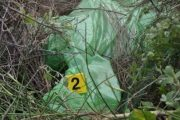 Kapen në flagrancë katër shtetas shqiptarë, deshën t'i shesin policit 112 kg drogë
