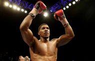 Joshua nuk do të ndeshet me Wilderin, mediat zbulojnë kundërshtarin e tij