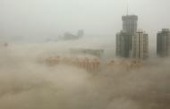 Smogu vdekjeprurës, Nju Delhi mbyll shkollat