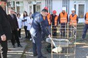Vihet gurthemeli i QKMF-së në qytetin e Rahovecit
