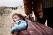 Fotoja-simbol në Siri! Babai largohet me djalin në valixhe