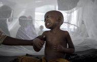 Epidemia e kolerës në Nigeri, 16 të vdekur