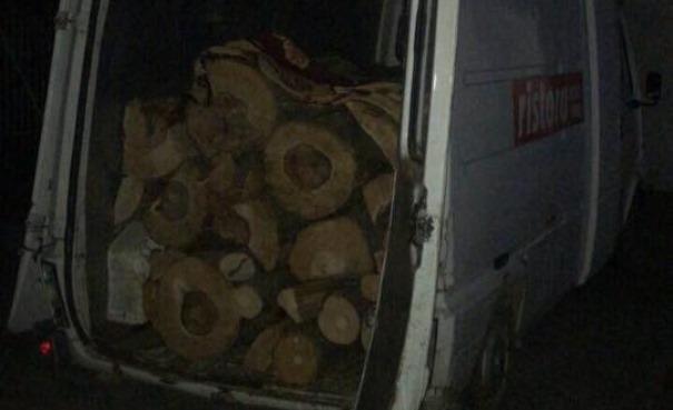 Kështu transportohen drutë e vjedhura në Suharekë