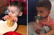 Kamerieri helmon me djathë 3-vjeçarin alergjik (FOTO)