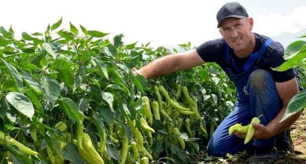 Ekrem Duraku nga Krusha e Madhe, njëri ndër fermerët më të mirë (Foto)