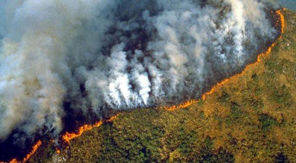 Amazona, mushkëria e fundit e njerëzimit po digjet