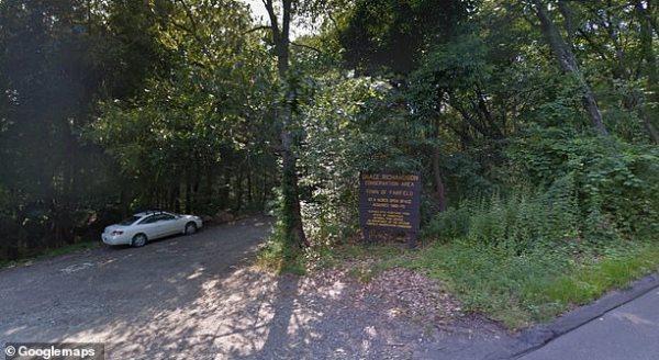 Kryen marrëdhënie seksuale në pyll, arrestohen 6 të moshuar
