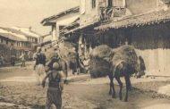 """""""New York Times"""" më 1913: Pse Austria e krijoi Mbretërinë e Shqipërisë, në pritje të një princi dhe me kryeqytet Elbasanin"""