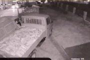 Vjedhja spektakolare e druve në Prizren(Video)