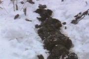 Lugina e Pashtrikut me dëshmorët e rënë për lirinë e Kosovës