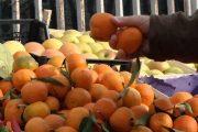 Mbi 24 mijë tonë mandarina hynë në Kosovë për tre vjet – përveç Perusë këto janë vendet tjera prej nga importohen ato