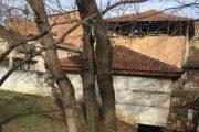 Komuna e Prizrenit paralajmëron prerjen e lisit afër Mullirit të Tabakhanes